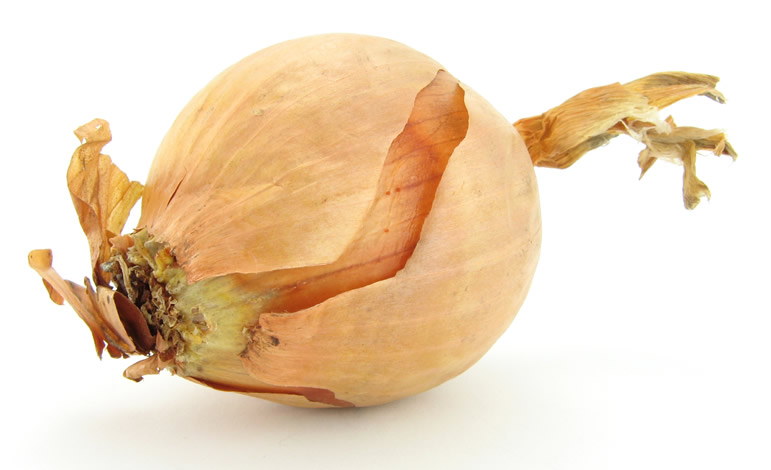 Unpeeled White Onion