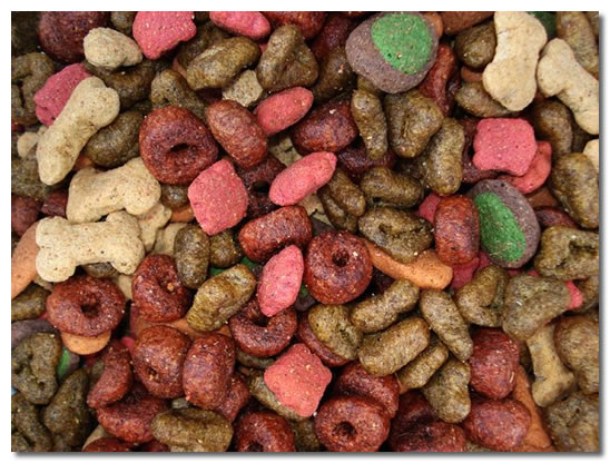 Chihuahua Dog Food
