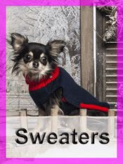 Shop Chihuahua sweaters
