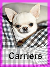 Shop Chihuahua carriers