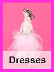 Shop Chihuahua dresses