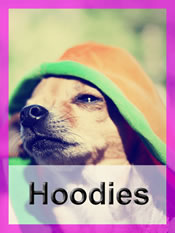 Shop Chihuahua hoodies