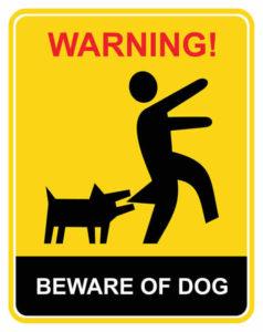 Chihuahua territorial barking
